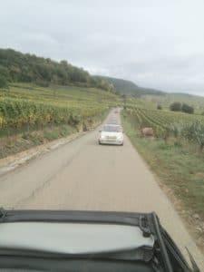 Sortie Alsace 27 SEPT 2020