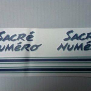 Kit déco 205 Sacré Numéro bleu (port inclus)