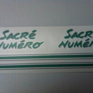 Kit déco 205 Sacré Numéro VERT (port inclus)