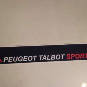 Pare soleil 205 Peugeot sport Bleu (Port inclus)